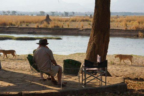 Mana Pools Zimparks Tarrifs